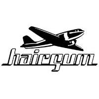 HAIRGUM, soins coiffants et colorations professionnels pour cheveux : Cire, crême et gel coiffants, coloration semi permanente.