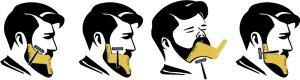 Panoplie du barbier Imperial Beard